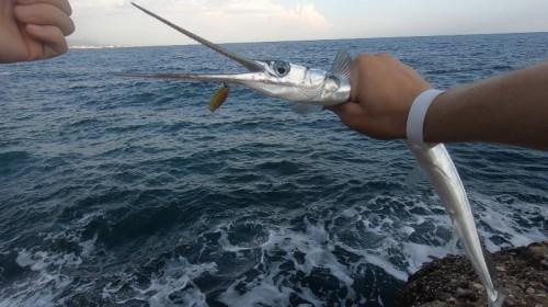 Рыбалка в Кемере с берега