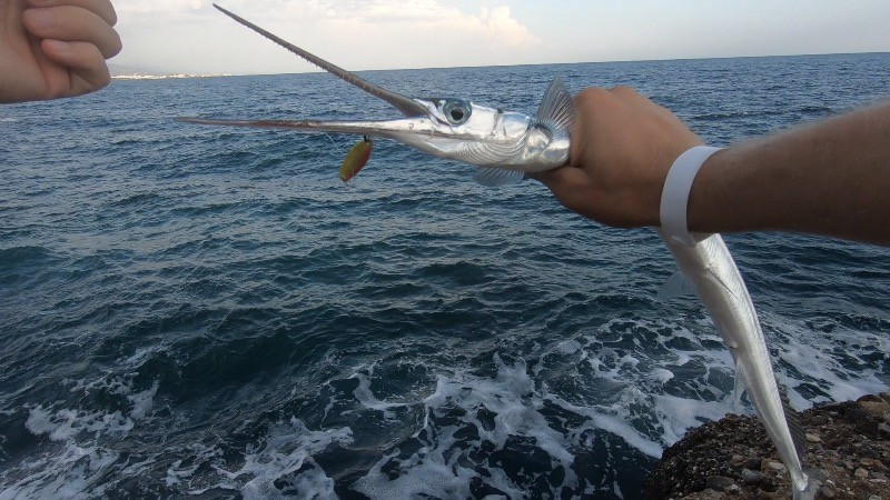Fishing in Kemer from the shore