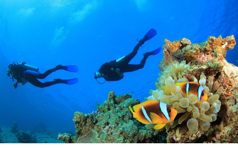 Where to dive in Kemer