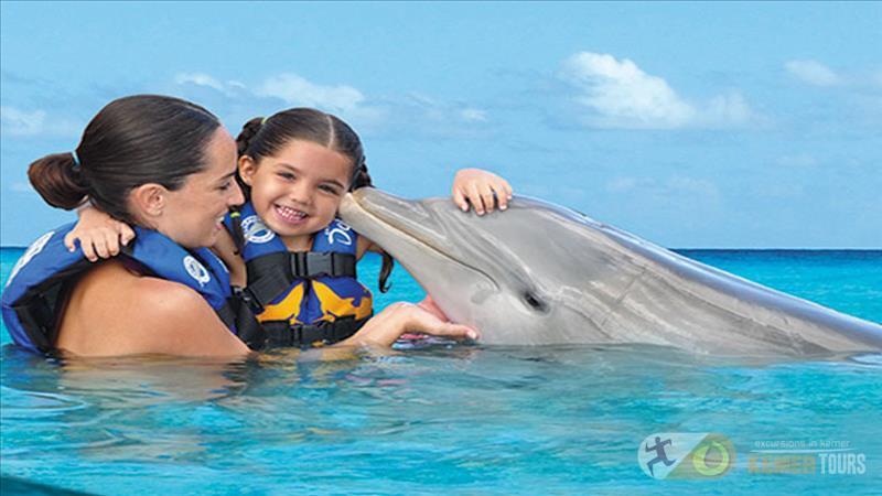 Плавание с дельфинами в Кемере