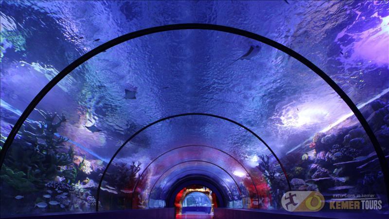 Oceanarium from Kemer
